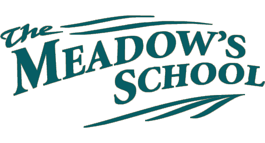 The Meadow's School